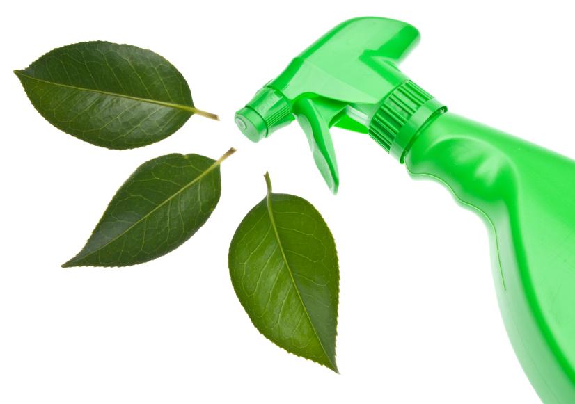 Limpieza ecológica